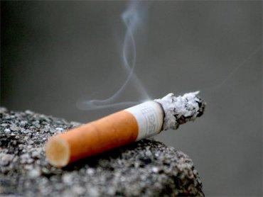 cigarette flavors Monte Carlo