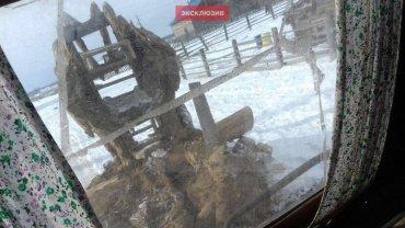 """Санкции против РФ сохранятся до полного выполнения """"минских соглашений"""", – посол Германии Райхель - Цензор.НЕТ 3271"""