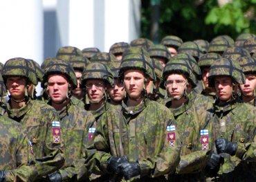 Медведь загнал 3000 финских военных в грузовики