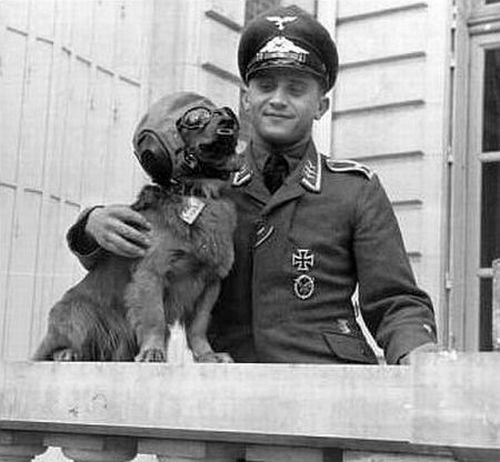 Вторая мировая война рейх фотоальбом